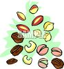 Various Types of Nuts Clip Art clipart