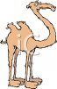Camel Cartoon clipart