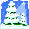 Pine Trees Covered with Snow at Night clipart