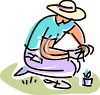 Man Planting  clipart