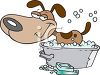 Dog Being Washed clipart