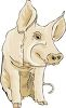 Cute Pig Sitting clipart