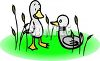 Duck Looking at a Hunting Decoy clipart