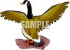 Duck About to Take Flight clipart