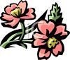 Pink Peonies clipart