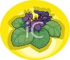 African Violets clipart