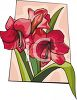 Red Lily Plant clipart