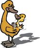 Duckling On His Dads Back clipart