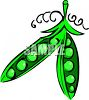 Cartoon of a Pea Pod clipart