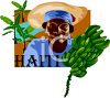 Tourism-Haiti Travel Poster clipart