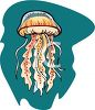 Large Jellyfish clipart