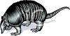 Realistic Styled Armadillo clipart