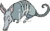 Cartoon of a Shaking Armadillo clipart