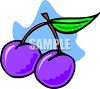 Plums clipart