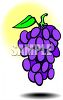 Purple Grape Cluster clipart