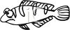 Black and White-Cartoon Tropical Fish clipart