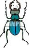 Hairy Blue Beetle clipart