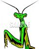 Praying Mantis Looking at You clipart
