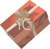Gift Wrapped Present clipart