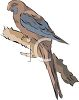 Parrot Sitting on a Branch clipart