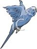 Pigeon Flying clipart