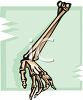 Human Arm and Hand Bones clipart