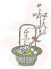 Container Garden in a Basket clipart