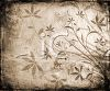 Distressed Background with Plants and Butterflies clipart