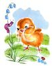 Baby Chick and a Caterpillar clipart