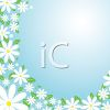 Spring Daisy Floral Background clipart