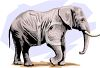 Realistic Style Elephant clipart