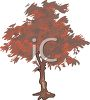 Red Maple Tree clipart