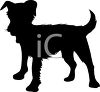 Animal Silhouette of a Scruffy Dog clipart