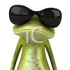 Frog Wearing Dark Glasses clipart