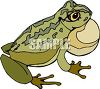 Bullfrog with Filled Airsac clipart