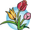 Several Tulips clipart