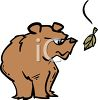 Angry Bear Looking at a Falling Leaf clipart
