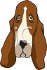 Sad face of a basset hound dog clipart