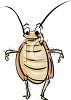 Cockroach Cartoon clipart