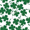Four Leafed Clovers On A Light Background clipart