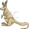 Cartoon Kangaroo clipart