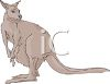 Young Brown Kangaroo clipart