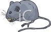 Little Gray Mouse Eating clipart
