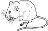 Black and White Mouse Eating clipart