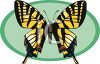 A Colorfully Patterned Butterfly clipart