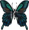 A Large Winged Butterfly clipart