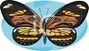 An Intricately Patterned Butterfly clipart