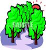 Path Through the Woods clipart