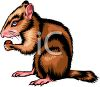 A Chipmunk Eating A Nut clipart