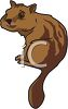 A Cute Striped Chipmunk clipart